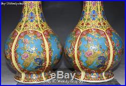 10 Marked Wucai Porcelain Phoenix Bird Bat Vase Bottle Pitcher Jug Pair Statue