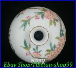10 Yongzheng Marked Colour Enamel Porcelain Gilt Flower Bird Vase Bottle Pair