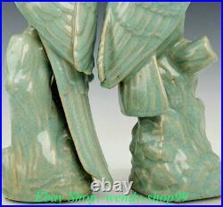 14 Old China Ru Kiln Porcelain Dynasty Palace poll parrot popinjay Birds Statue