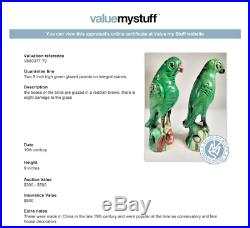 19th C. Pair of Chinese Famille-Verte Porcelain Parrots Conservatory Fern House