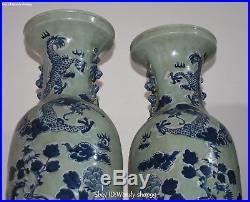 24 Unique Color Porcelain Dragon Phoenix Bird Flower Vase Bottle Pot Pair