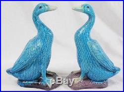 Antique Chinese Export Turquoise Porcelain Duck 9 Pair + More Lot (7) Bird