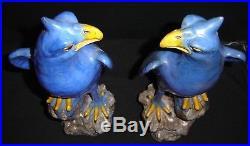 Antique Pair of Superb Large 19th Cent. Chinese Porcelain Blue Phoenix Parrots