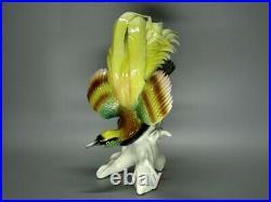 Antique Paradise Bird Porcelain Figurine Karl Ens Germany Art Sculpture Decor