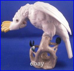 Augarten Wien Porcelain Cockatoo Bird Figurine Figure Porzellan Figur Austrian
