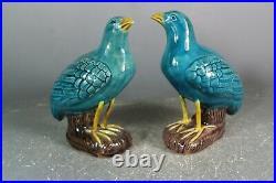 Beautiful chinese Turquoise blue glaze porcelain a pair quail