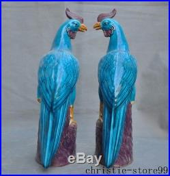 Chinese Wucai porcelain glaze Feng Shui Auspicious Fine Gods Phoenix Bird Statue