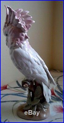 Large White Pink Tone Royal Dux Porcelain Cockatoo Parrot Macaw Figurine Statue