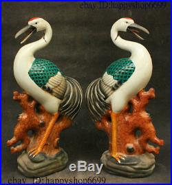 Old China Colour Porcelain Fengshui longevity Bird Red-Crowned Crane Statue Pair