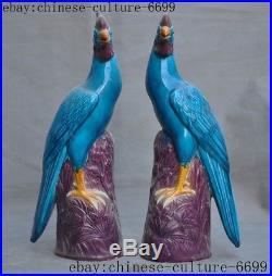 Old Chinese wucai porcelain glaze Feng Shui auspicious phoenix bird statue pair