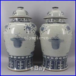 Pair 18''chinese blue and white porcelain painting flowers bird jar vase statue