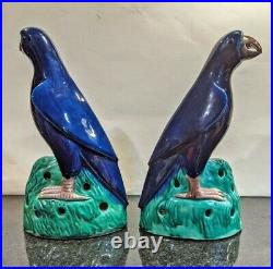 Pair of 19th Century Chinese Porcelain Parrots with Cobalt Blue Glaze