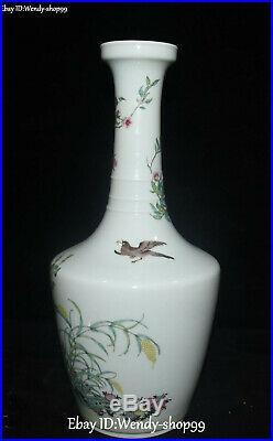 Qing Dynasty Color Porcelain Magpie Bird Flower Vase Pot Bottle Jardiniere