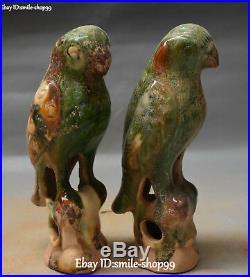 Unique Chinese Tang Sancai Pottery Porcelain Parrot Bird Animal Statue Pair