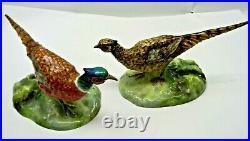 Vintage Porcelain Pheasant Bird Pair Figurines J. T. Jones Crown Staffordshire
