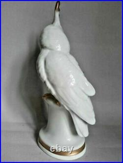 Vintage Rare Porcelain Figurine Bird Statue Kakadu Parrot Karl Ens Germany 1920