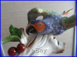 Vintage statue porcelaine saxe allemagne N couronné perroquet parrot bird ara